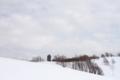 [丸加山]スノーシューハイク