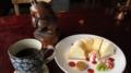 [Cafe][雨竜]