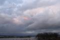[三日月湖][夕景][鳥]