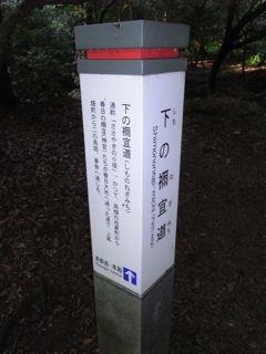 20090608170439