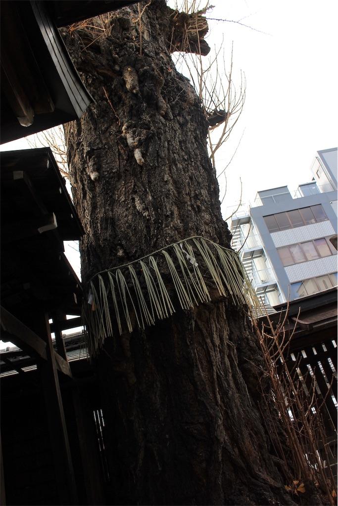f:id:kurohirame:20200103110843j:image