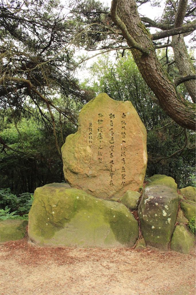 f:id:kurohirame:20200629154317j:image