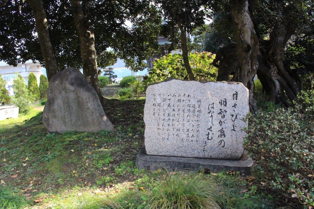 f:id:kurohirame:20201223174217j:image