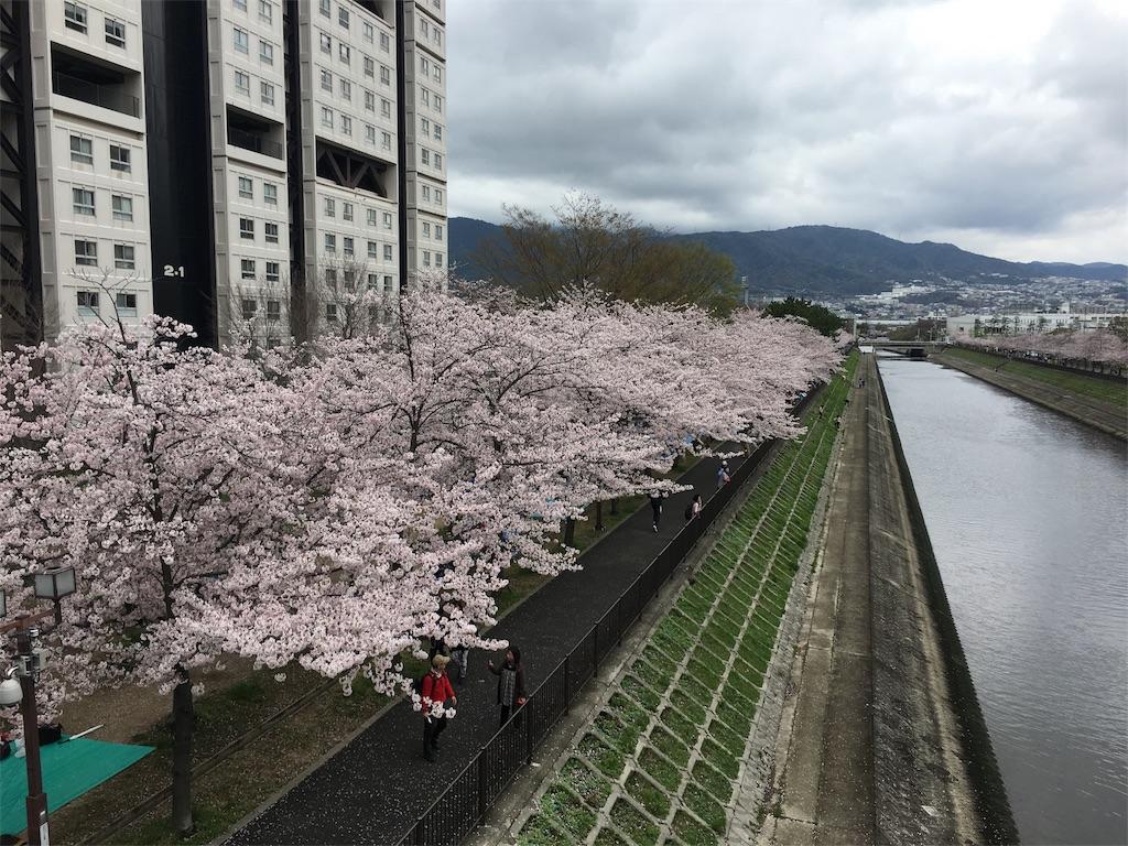 f:id:kuroibozu:20170409143220j:image