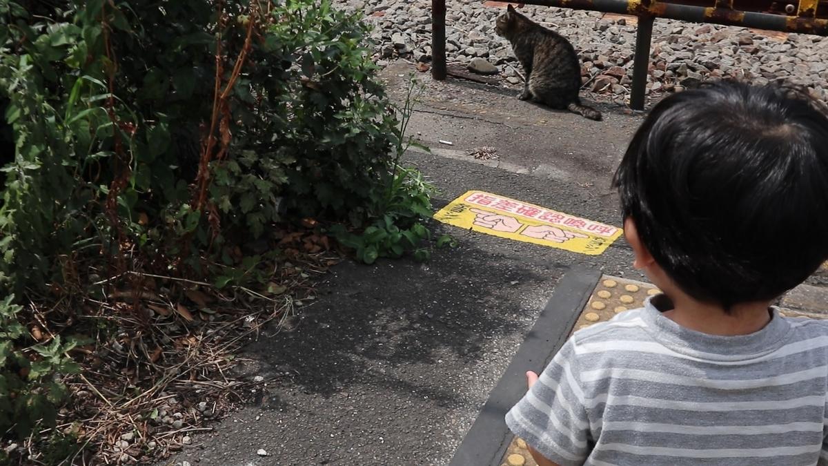 f:id:kurokichidesu:20190829171611j:plain