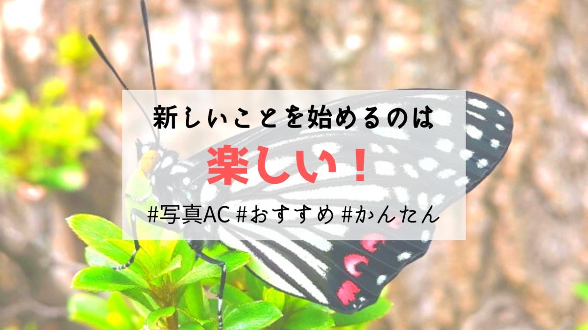 f:id:kurokichidesu:20191029132700p:plain