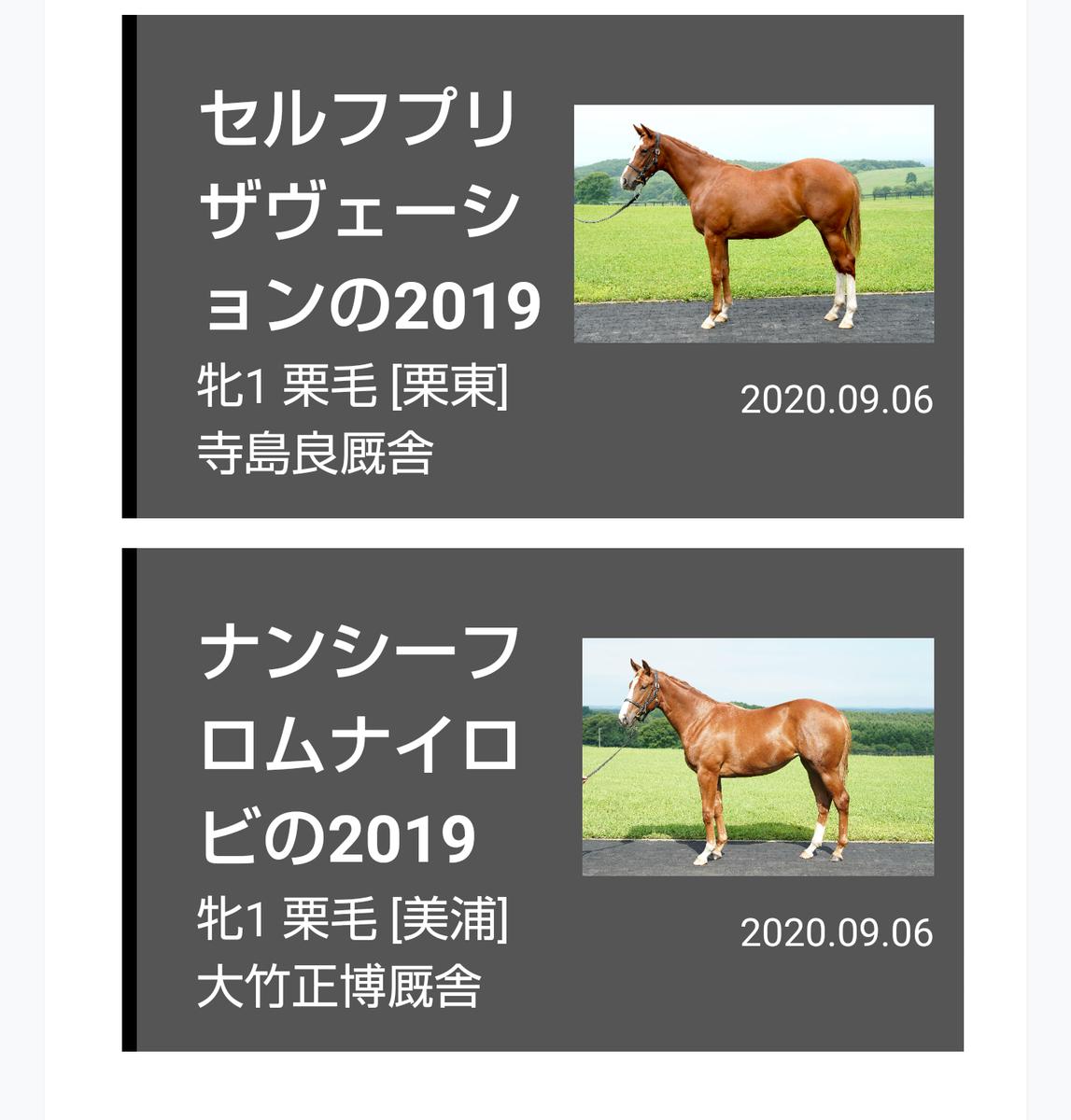 f:id:kurokiri-G1:20200914014206p:plain
