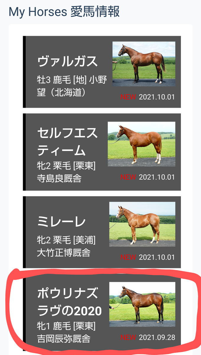 f:id:kurokiri-G1:20211003123745p:plain