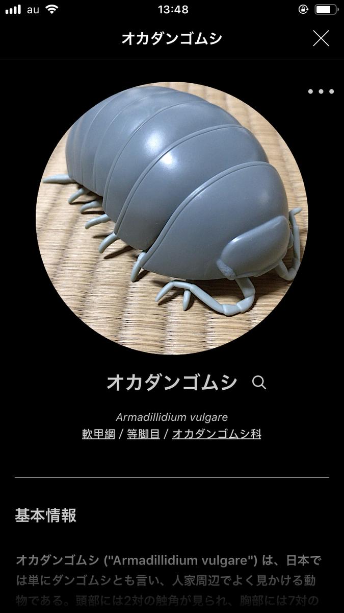 f:id:kurokitsune:20190328155218p:plain