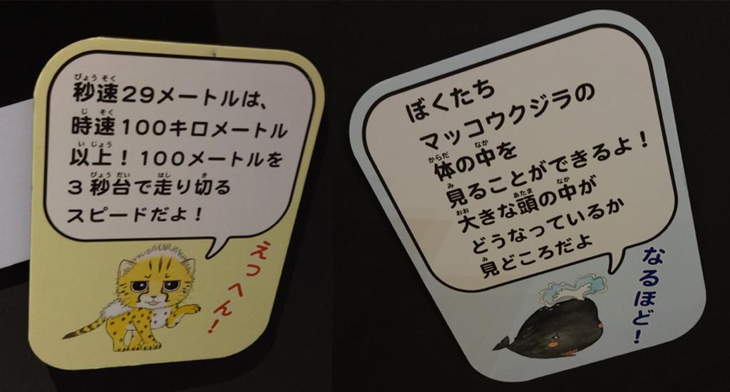 f:id:kurokitsune:20190415132734j:plain