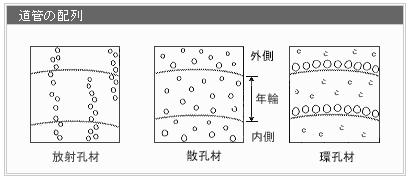 f:id:kuroko66:20190713233032p:plain