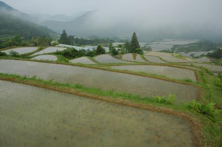 f:id:kurokoshusaru:20060528075136j:image