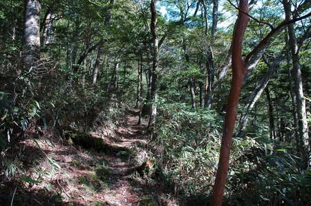f:id:kurokoshusaru:20060915083420j:image