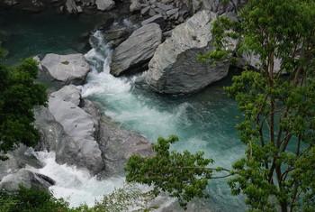 f:id:kurokoshusaru:20080609182430j:image