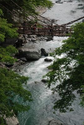f:id:kurokoshusaru:20080609183936j:image