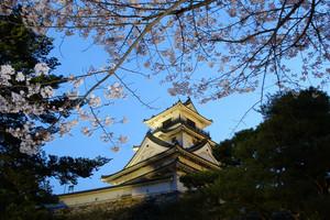 f:id:kurokoshusaru:20080818191830j:image