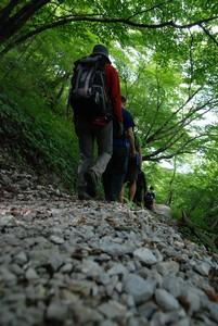 f:id:kurokoshusaru:20080819183853j:image