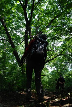 f:id:kurokoshusaru:20080819185328j:image