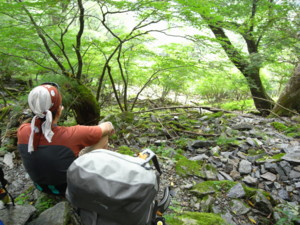 f:id:kurokoshusaru:20080911184819j:image