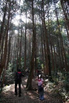 f:id:kurokoshusaru:20090304121637j:image