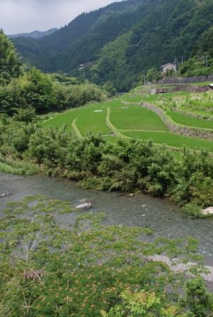 f:id:kurokoshusaru:20090720183432j:image