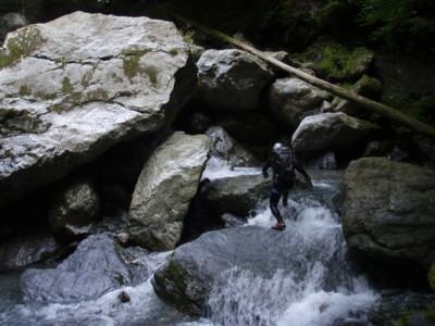 f:id:kurokoshusaru:20090831121057j:image