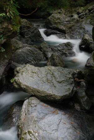 f:id:kurokoshusaru:20090831194121j:image