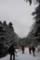 赤岳鉱泉へ
