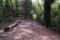 里山の道 2