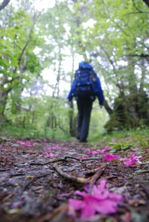 f:id:kurokoshusaru:20100531121101j:image