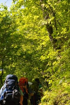 f:id:kurokoshusaru:20100614120349j:image