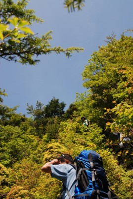 f:id:kurokoshusaru:20100614120912j:image
