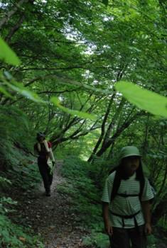 f:id:kurokoshusaru:20100822184012j:image