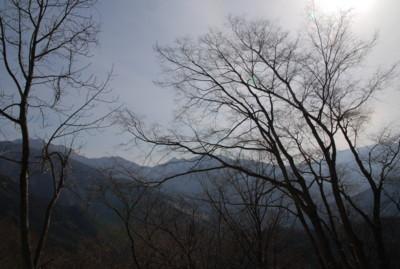 f:id:kurokoshusaru:20110315061912j:image