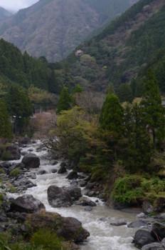 f:id:kurokoshusaru:20110425061954j:image