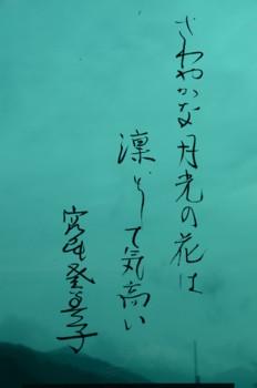 f:id:kurokoshusaru:20110503183425j:image