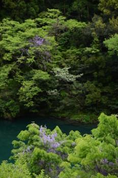 f:id:kurokoshusaru:20110509042351j:image