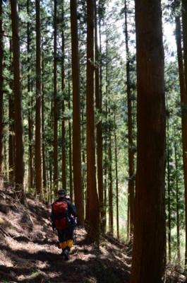 f:id:kurokoshusaru:20110509043507j:image