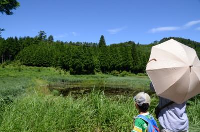 f:id:kurokoshusaru:20110711055648j:image