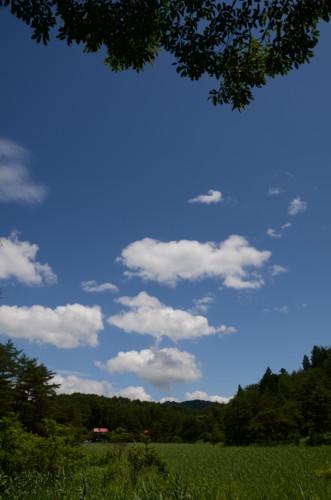 f:id:kurokoshusaru:20110711200419j:image