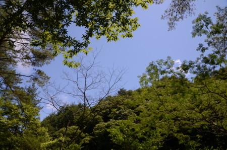 f:id:kurokoshusaru:20110714200756j:image