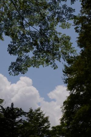 f:id:kurokoshusaru:20110724192745j:image