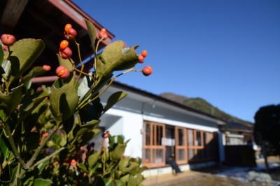 f:id:kurokoshusaru:20111214044915j:image
