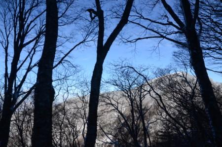 f:id:kurokoshusaru:20111218061602j:image