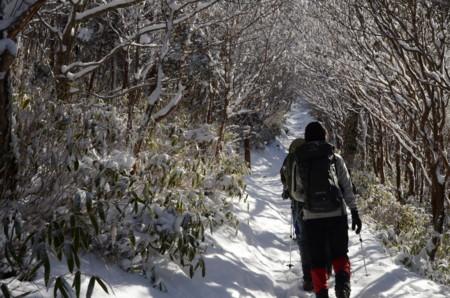 f:id:kurokoshusaru:20111218062059j:image