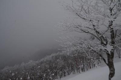 f:id:kurokoshusaru:20120108062119j:image