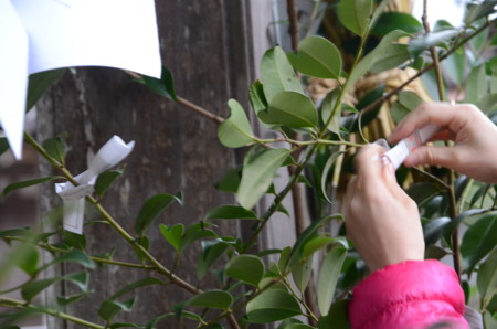 f:id:kurokoshusaru:20120123185025j:image