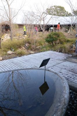 f:id:kurokoshusaru:20120125045809j:image