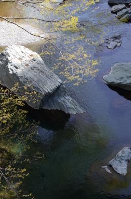 f:id:kurokoshusaru:20120430065554j:image