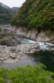 新緑の大歩危峡